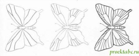 как рисовать бабочку карандашом, первый вариант