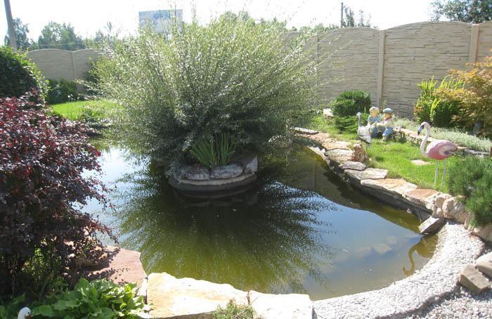 Классический тип водоема в саду