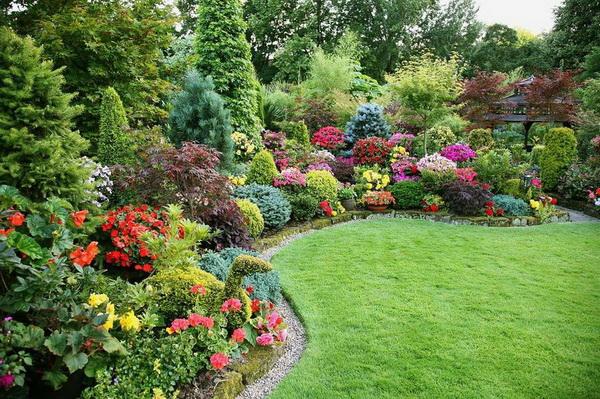 Красивый непрерыно цветущий сад