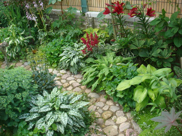 Композиция из декоративно-лиственных растений