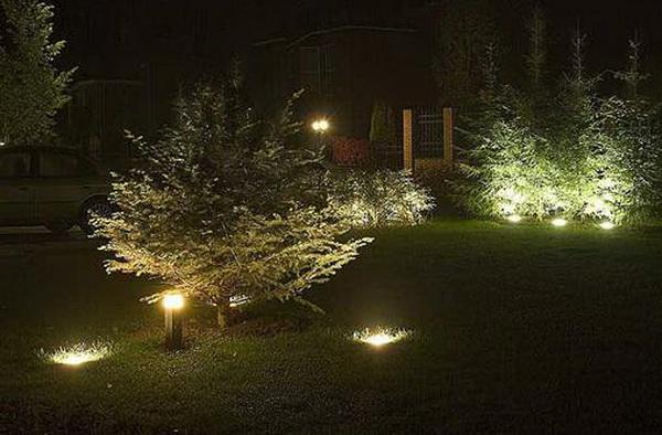 Выделение растений с помощью освещения