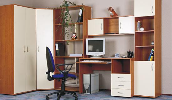 Шкаф с рабочим местом для школьника