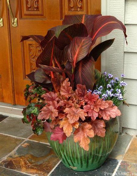 Гейхера на клумбе в комбинации с другими растениями