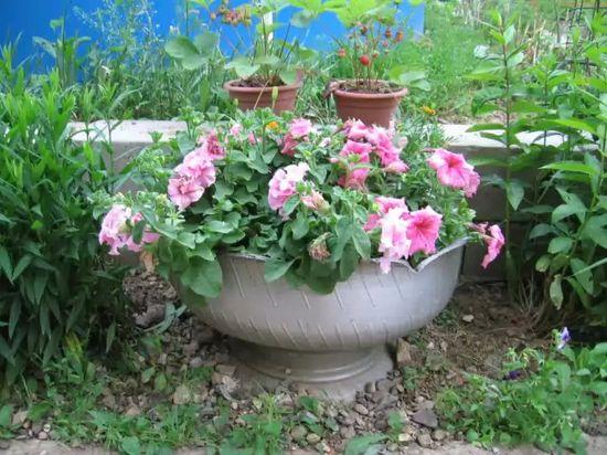 Садовая ваза из старой покрышки