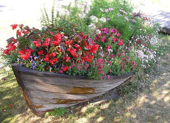 клумба в лодке для сада