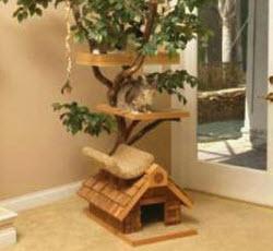 строим дом для кота